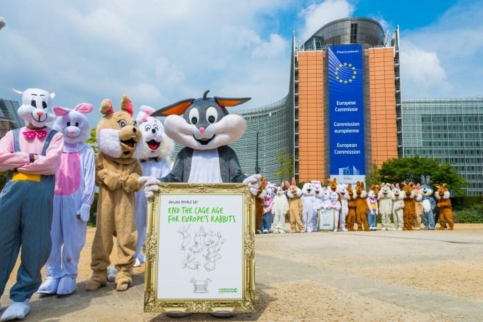Een leger van 50 'konijnen' in actie in Brussel ter gelegenheid van de overhandiging.