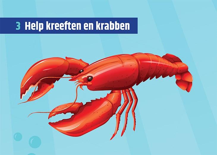 Afbeelding van een kreeft met de titel 'Help kreeften en krabben'