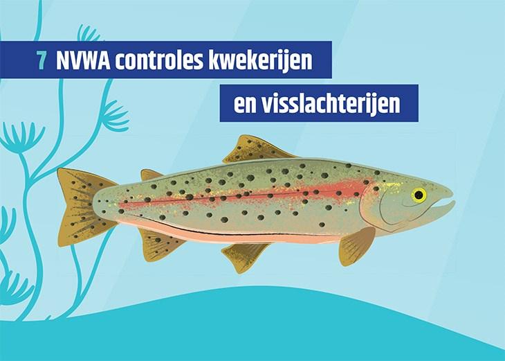 Vissenkaart met daarop de titel 'NVWA controles kwekerijen en visslachterijen'